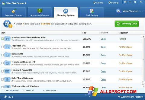 Screenshot Wise Disk Cleaner per Windows XP