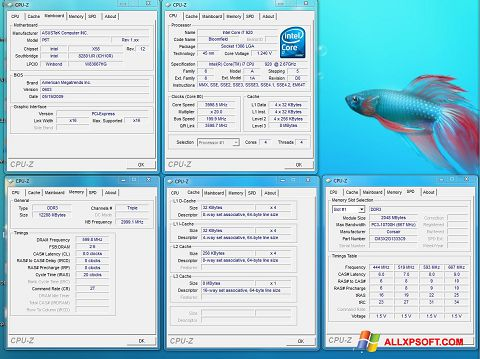 Screenshot CPU-Z per Windows XP