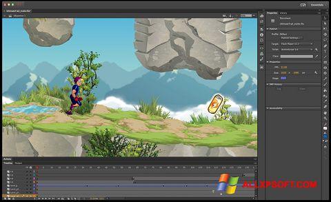 Screenshot Adobe Flash Professional per Windows XP